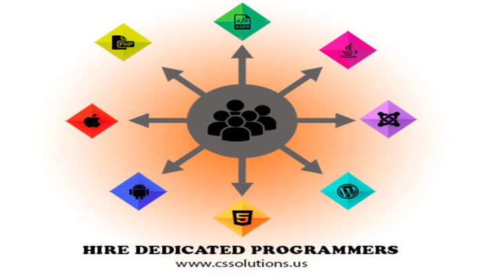 Hire Dedicated Programmers